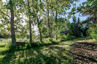 Photo 17: 1 51032 RGE RD 272: Rural Parkland County House for sale : MLS®# E4179338