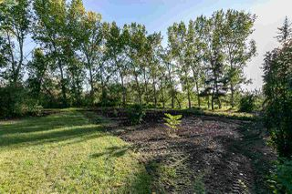 Photo 14: 1 51032 RGE RD 272: Rural Parkland County House for sale : MLS®# E4179338