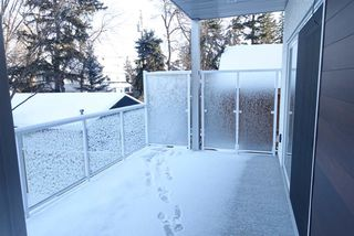 Photo 23: 11712 Edinboro Road in Edmonton: Zone 15 House for sale : MLS®# E4191048