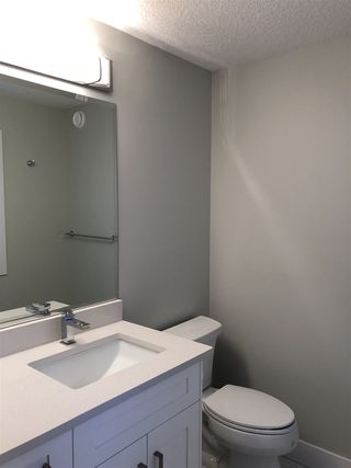 Photo 11: 11712 Edinboro Road in Edmonton: Zone 15 House for sale : MLS®# E4191048