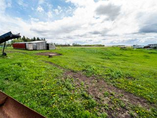 Photo 11: 55330 RGE RD 260: Rural Sturgeon County House for sale : MLS®# E4200329