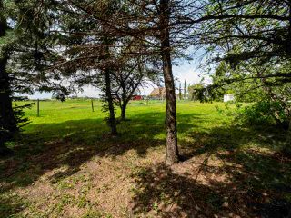 Photo 12: 55330 RGE RD 260: Rural Sturgeon County House for sale : MLS®# E4200329