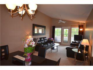 Photo 5: 20646 W RIVER Road in Maple Ridge: Southwest Maple Ridge House for sale : MLS®# V967877