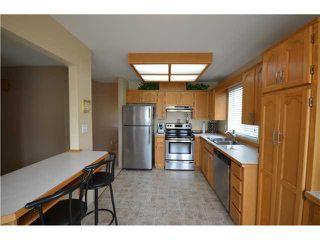 Photo 3: 20646 W RIVER Road in Maple Ridge: Southwest Maple Ridge House for sale : MLS®# V967877