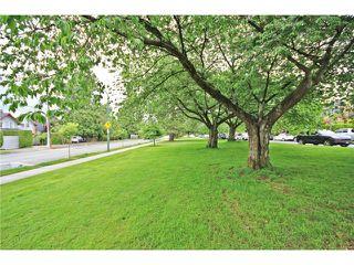 Photo 17: 3282 W 1ST AV in Vancouver: Kitsilano Condo for sale (Vancouver West)  : MLS®# V1066704