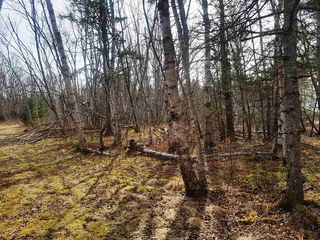 Photo 10: LOT 21 Augsburger Street in Victoria Harbour: 404-Kings County Vacant Land for sale (Annapolis Valley)  : MLS®# 201926264