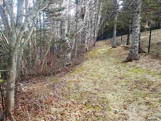 Photo 9: LOT 21 Augsburger Street in Victoria Harbour: 404-Kings County Vacant Land for sale (Annapolis Valley)  : MLS®# 201926264