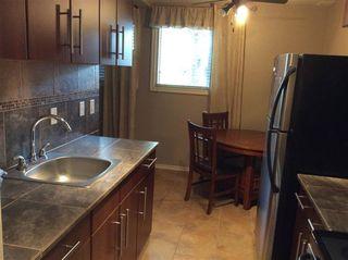 Photo 10: 1 10515 80 Street NW in Edmonton: Zone 15 Condo for sale : MLS®# E4190434