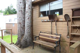 """Photo 12: 8 8266 KING GEORGE Boulevard in Surrey: West Newton Manufactured Home for sale in """"THE PLAZA"""" : MLS®# R2462748"""