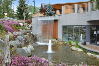 """Photo 38: 103 6420 194 Street in Surrey: Cloverdale BC Condo for sale in """"WATERSTONE"""" (Cloverdale)  : MLS®# R2508915"""