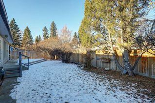 Photo 19: 44 Chinook Drive in Calgary: Chinook Park Detached for sale : MLS®# A1052138