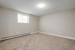 Photo 18: 44 Chinook Drive in Calgary: Chinook Park Detached for sale : MLS®# A1052138