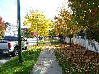 Photo 27: 28 15030 58 Avenue in Summer Leaf: Panorama Village Home for sale ()  : MLS®# F1124071