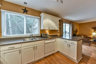 Photo 9: 1250 HORNBY STREET in Coquitlam: New Horizons House for sale : MLS®# R2033219