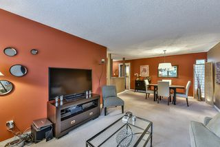 Photo 5: 1250 HORNBY STREET in Coquitlam: New Horizons House for sale : MLS®# R2033219