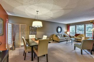 Photo 3: 1250 HORNBY STREET in Coquitlam: New Horizons House for sale : MLS®# R2033219