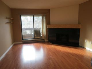Photo 3: 206 7411 MINORU BOULEVARD in Richmond: Brighouse South Condo for sale : MLS®# R2039283