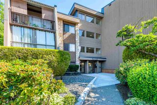 Photo 19: 226 9101 HORNE STREET in Burnaby: Government Road Condo for sale (Burnaby North)  : MLS®# R2079349