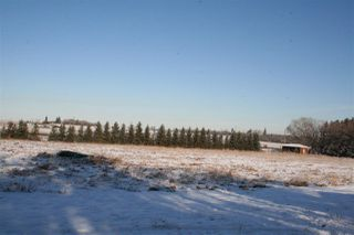 Photo 3: 22367 HWY 16: Rural Strathcona County Rural Land/Vacant Lot for sale : MLS®# E4180490