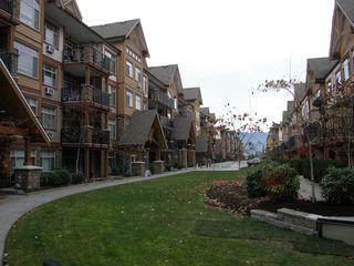 Photo 7: 205 12565 190A Street in CEDAR DOWNS: Home for sale : MLS®# r2207991