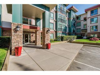"""Photo 20: 305 33485 SOUTH FRASER Way in Abbotsford: Central Abbotsford Condo for sale in """"Citadel Ridge"""" : MLS®# R2425076"""