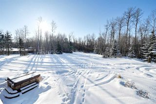 Photo 43: 398 52465 RGE RD 213: Rural Strathcona County House for sale : MLS®# E4190632