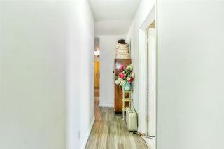 Photo 15: 7507 98 Avenue in Edmonton: Zone 18 House for sale : MLS®# E4195042
