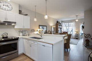 """Photo 9: 202 1388 NELSON Street in Vancouver: West End VW Condo for sale in """"ANDALUCA"""" (Vancouver West)  : MLS®# R2467765"""