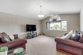 Photo 19: 17816 84 Street NW in Edmonton: Zone 28 House for sale : MLS®# E4212190