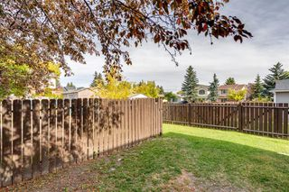 Photo 29: 212 ERIN MOUNT Place SE in Calgary: Erin Woods Detached for sale : MLS®# A1034385