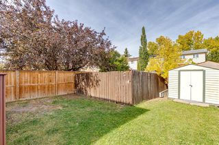 Photo 25: 212 ERIN MOUNT Place SE in Calgary: Erin Woods Detached for sale : MLS®# A1034385