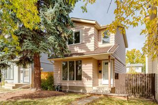 Photo 33: 212 ERIN MOUNT Place SE in Calgary: Erin Woods Detached for sale : MLS®# A1034385