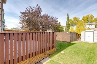 Photo 24: 212 ERIN MOUNT Place SE in Calgary: Erin Woods Detached for sale : MLS®# A1034385