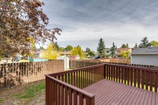 Photo 30: 212 ERIN MOUNT Place SE in Calgary: Erin Woods Detached for sale : MLS®# A1034385