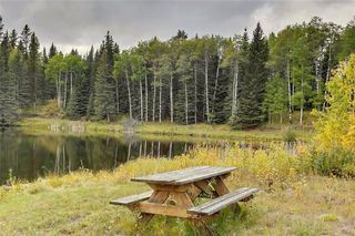 Photo 43: 18 Aspen Creek Drive: Rural Foothills County Detached for sale : MLS®# A1037703