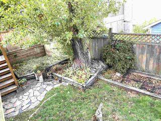 Photo 32: 13485 62 Avenue in Surrey: Panorama Ridge House for sale : MLS®# R2511820