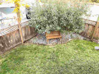 Photo 33: 13485 62 Avenue in Surrey: Panorama Ridge House for sale : MLS®# R2511820
