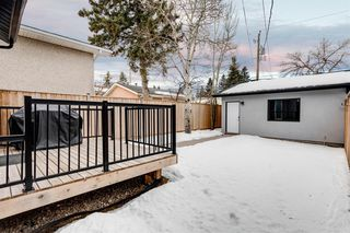 Photo 15: 1615 41 Street SW in Calgary: Rosscarrock Semi Detached for sale : MLS®# A1058448