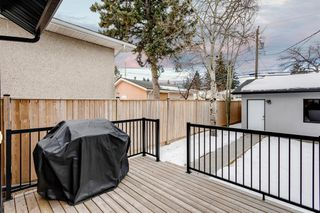 Photo 14: 1615 41 Street SW in Calgary: Rosscarrock Semi Detached for sale : MLS®# A1058448