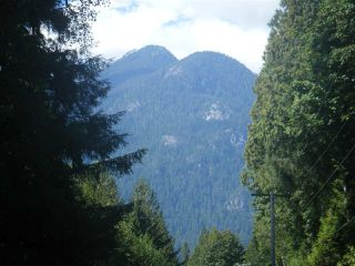 Photo 4: 14600 SQUAMISH VALLEY ROAD in Squamish: Upper Squamish Land for sale : MLS®# R2100484