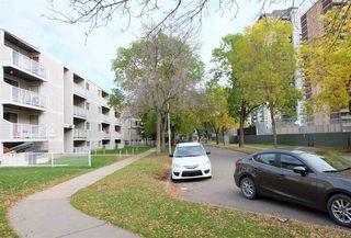Photo 18: 210 8640 106 Avenue in Edmonton: Zone 13 Condo for sale : MLS®# E4175466