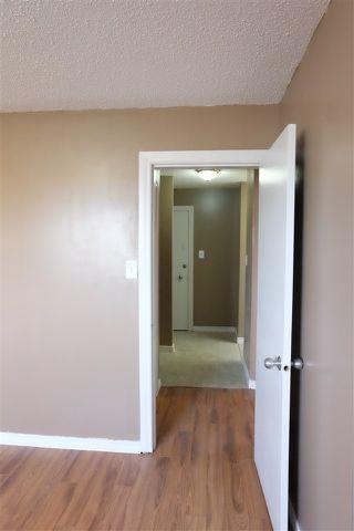 Photo 8: 210 8640 106 Avenue in Edmonton: Zone 13 Condo for sale : MLS®# E4175466