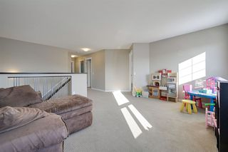Photo 21: 629 ARMITAGE Crescent: Sherwood Park House for sale : MLS®# E4197947