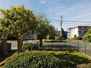 Photo 18: 201 1037 Richardson St in VICTORIA: Vi Fairfield West Condo Apartment for sale (Victoria)  : MLS®# 610474