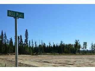 """Photo 19: LOT 17 BELL Place in Mackenzie: Mackenzie -Town Land for sale in """"BELL PLACE"""" (Mackenzie (Zone 69))  : MLS®# N227310"""