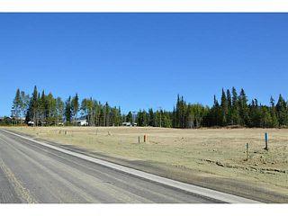 """Photo 18: LOT 17 BELL Place in Mackenzie: Mackenzie -Town Land for sale in """"BELL PLACE"""" (Mackenzie (Zone 69))  : MLS®# N227310"""