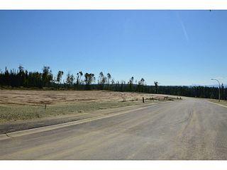 """Photo 8: LOT 17 BELL Place in Mackenzie: Mackenzie -Town Land for sale in """"BELL PLACE"""" (Mackenzie (Zone 69))  : MLS®# N227310"""