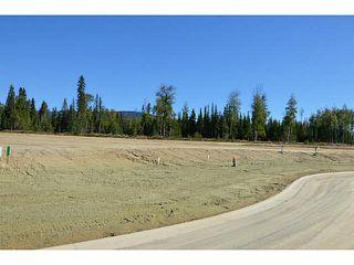 """Photo 16: LOT 17 BELL Place in Mackenzie: Mackenzie -Town Land for sale in """"BELL PLACE"""" (Mackenzie (Zone 69))  : MLS®# N227310"""