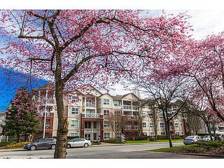 Photo 4: 426 8068 120A Street in Surrey: Queens Park Condo for sale : MLS®# F1433086