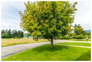 Photo 25: 5200 Northeast 30 Street in Salmon Arm: N. Broadview House for sale : MLS®# 10121876
